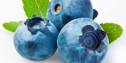 grupo-canela-alimentos-produtos-blueberry-2020