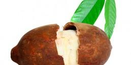 grupo-canela-alimentos-produtos-cupuacu-2020