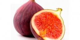 grupo-canela-alimentos-produtos-figo-2020