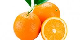 grupo-canela-alimentos-produtos-laranja-2020