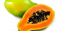 grupo-canela-alimentos-produtos-mamao-2020