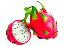 grupo-canela-alimentos-produtos-pitaya-2020