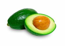 grupocanelas-frutas-abacate-2020