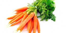 grupocanelas-legumes-cenoura-2020