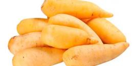 grupocanelas-legumes-mandioquinha-2020